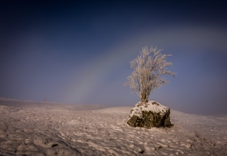 Fogbow on Rannoch Moor